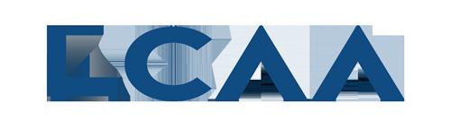 Learning Curve Academy Africa Logo